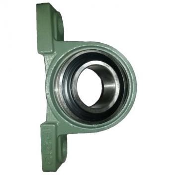 Flat Cage Needle Roller Bearings Na4906 (NA4902 NA4903 NA4904 NA49/22 NA6902 NA6903 NA6904 NA69/22 NA4905 NA49/28 NA4906 NA49/32 NA6905 NA69/28 NA6906 NA69/32)