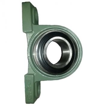 Non-Standard 6903 RS 18307 RS Deep Groove Ball Bearing for Bike