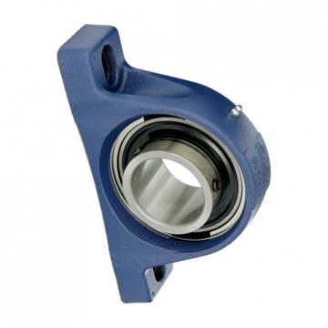 SKF 24024 Spherical Roller Bearing 24024-2CS5/VT143 SKF Bearings