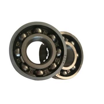 High Temperature Resistance Full Ceramic Bearing 6204 2RS