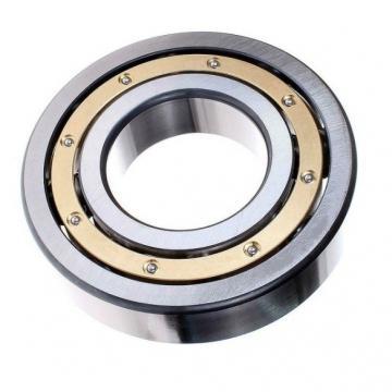 NSK High Precision Bearing 7204 P4 Angular Contact Ball Bearing (7003 7004 7005 7006 7007 7008 7009)